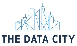 The Data City, company logo